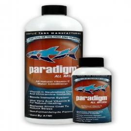 Paradigm 118 ml
