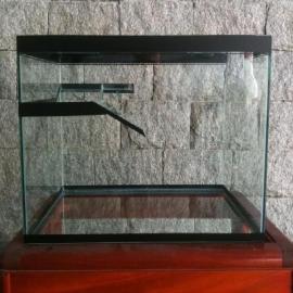 Terrario s/ decoracao 30 cm