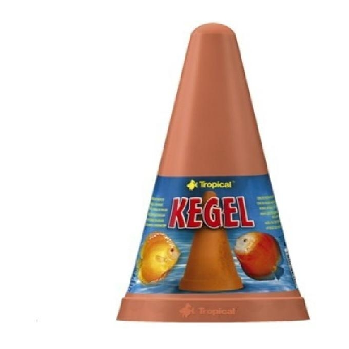 Cone Desova Kegel Tropical