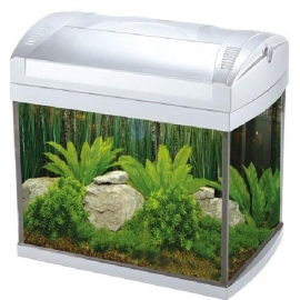 Aquario boyu zj-601 60 l