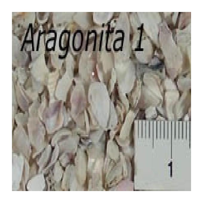 Cascalho Aragonita fg Nr 1 780 gr