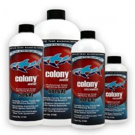 Colony freshwater 236 ml