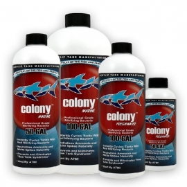 Colony freshwater 473 ml
