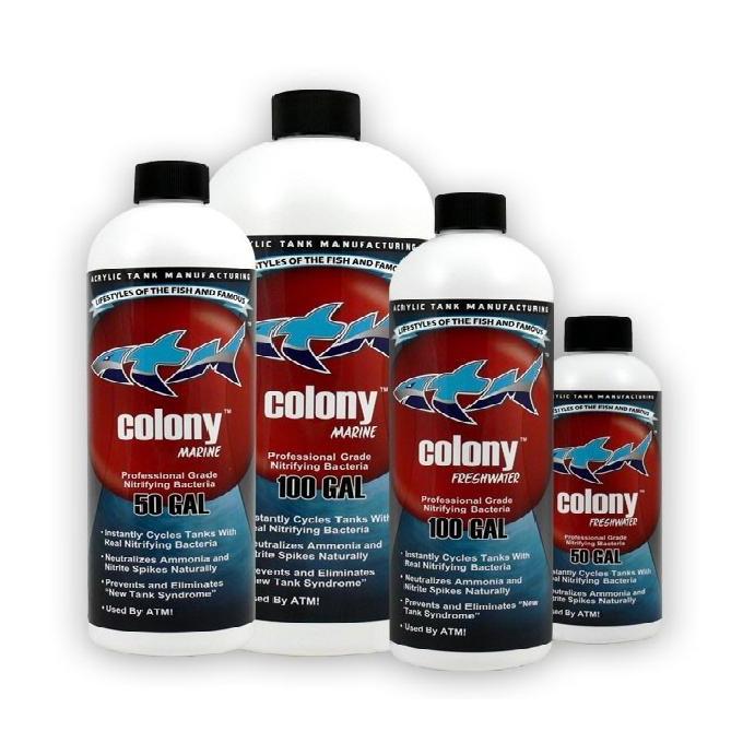 Colony freshwater 473 ml